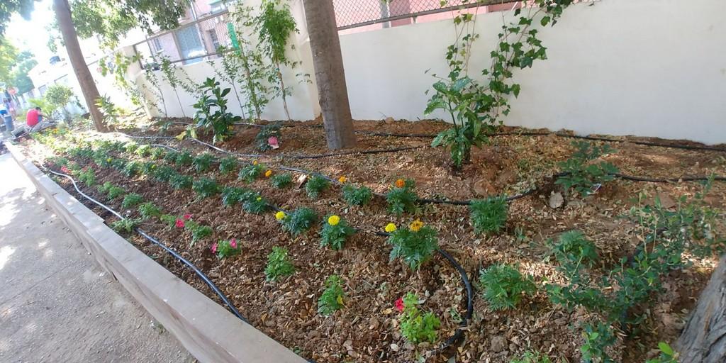 Abierto plazo de solicitud del módulo de FP de Grado Medio de Jardinería y Floristería